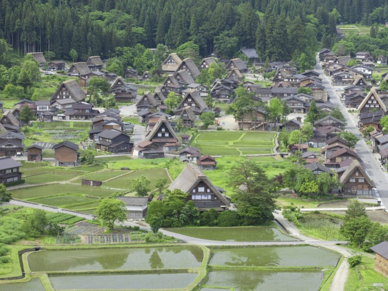 2019 Shirakawago and Suganuma Bus Tour