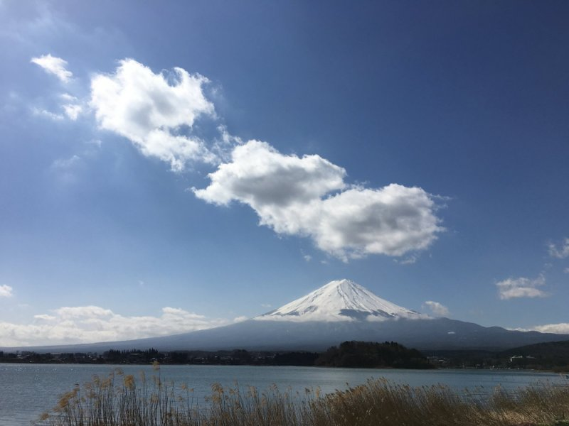 Fantastic Fuji & Hakone 1 Day Tour (Return by Shinkansen from Odawara to Tokyo) with Lunch