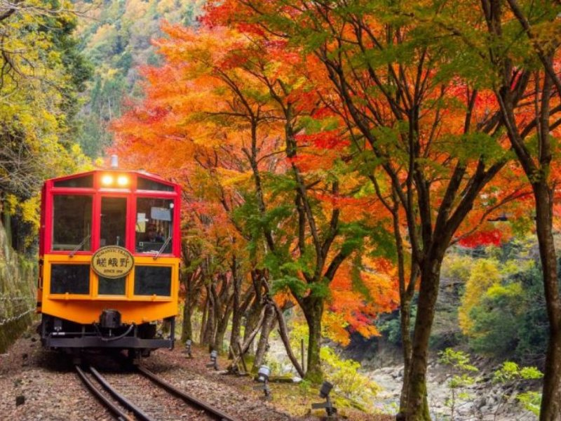 Kyoto Arashiyama Morning Tour with Sagano Romantic Train